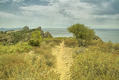 Rocky Path To The Sea Poster