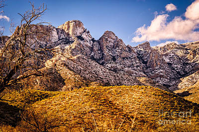 Poster featuring the photograph Rocky Peaks by Mark Myhaver