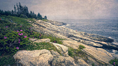 Rocky Shore At Pemaquid Poster by Joan Carroll