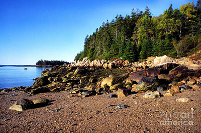 Rocky Shoreline Deer Isle Maine Poster by Thomas R Fletcher