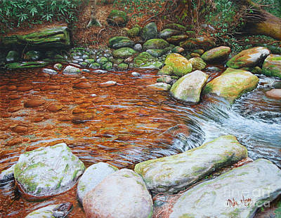 Poster featuring the painting Rocky Stream by Mike Ivey
