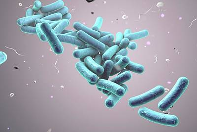Rod-shaped Bacteria Poster by Kateryna Kon