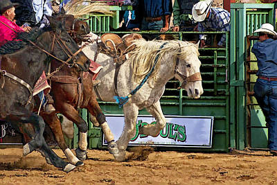 Rodeo Action Poster by Priscilla Burgers