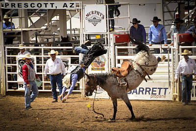 Rodeo High Flyer Poster by Jon Berghoff