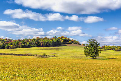 Rolling Fields Of Color Poster by Bill Tiepelman
