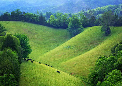 Rolling Hills Of Tennessee Poster
