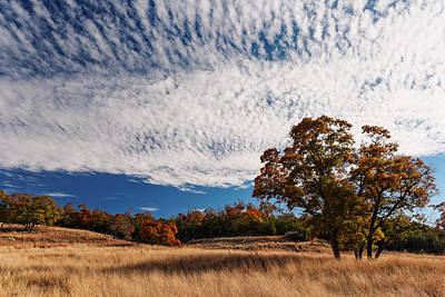 Rolling Hills Of The Texas Hill Country In The Fall - Fredericksburg Texas Poster by Silvio Ligutti