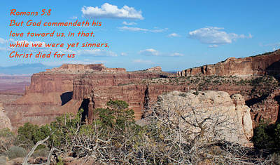 Romans 5-8  Canyonlands Np  Poster by Nelson Skinner