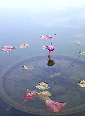 Romantic Pond Poster
