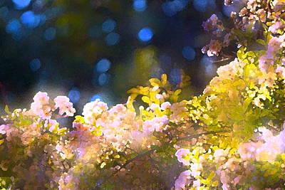 Rose 183 Poster by Pamela Cooper
