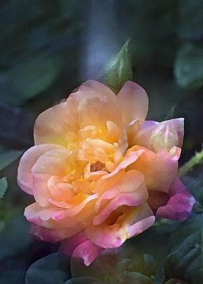Rose 218 Poster