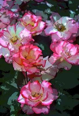 Rose 226 Poster