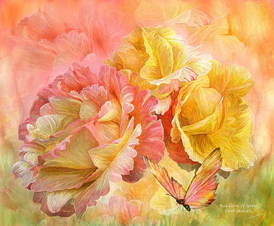 Rose - Colors Of Spring Poster by Carol Cavalaris
