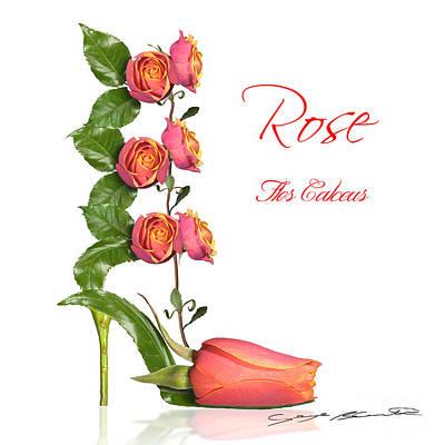 Rose Flos Calceus Poster