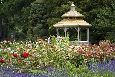 Poster featuring the photograph Rose Garden Gazebo by Sonya Lang