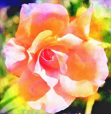 Rose On Canvas  Poster by Cathie Tyler
