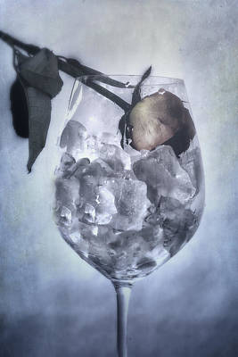 Rose On The Rocks Poster by Joana Kruse