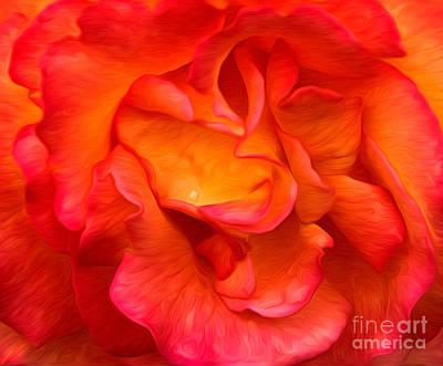 Rose Red Orange Yellow Poster