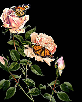 Roses And Butterflies Poster