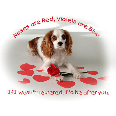 Roses Are Red Poster by Diane Hagler