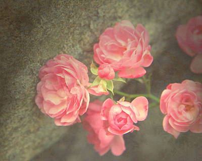 Poster featuring the photograph Roses On Granite by Brooke T Ryan