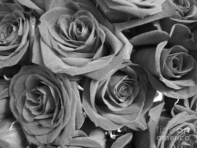 Poster featuring the photograph Roses On Your Wall Black And White  by Joseph Baril