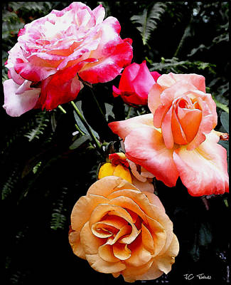 Poster featuring the photograph Roses Roses Roses by James C Thomas