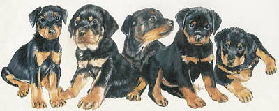 Rottweiler Puppies Poster by Barbara Keith