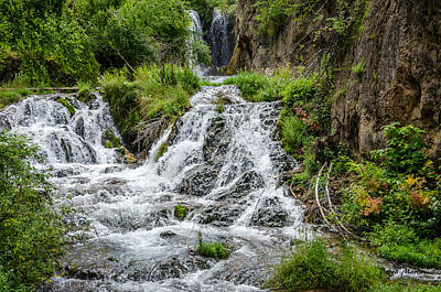 Roughlock Falls South Dakota Poster by Debra Martz