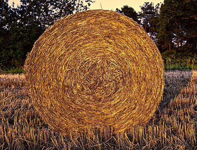 Round Hay Bale Poster by Daniel Hagerman