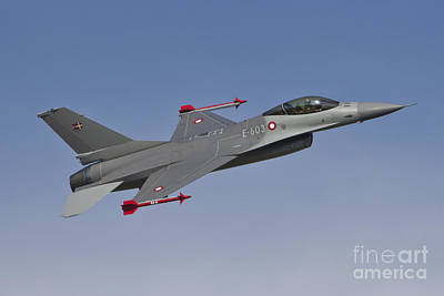 Royal Danish Air Force F-16a Fighting Poster