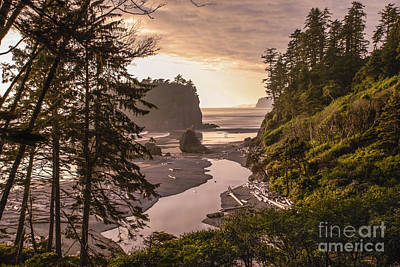 Ruby Beach Landscape Poster