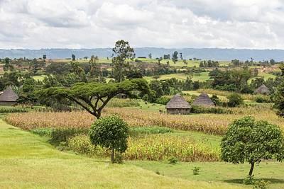 Rural Ethiopian Landscape Poster