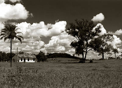 Poster featuring the photograph Rural Landscape by Amarildo Correa