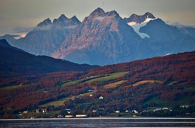Rural Lyngenalp Autumn Fjordland Poster by David Broome