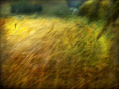 Ruralscape #8. Field And Wind Poster