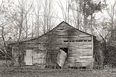 Rustic Barn Falling Down Poster by Scott Cameron