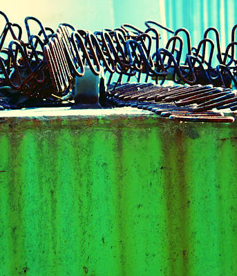 Rusty Coils 2 Poster by Laurie Tsemak