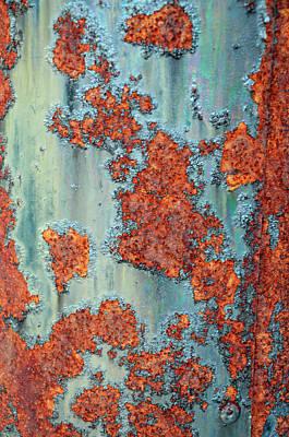 Rusty Poster by Geraldine Alexander