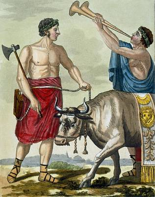 Sacrifice Of A Bull, Illustration Poster by Jacques Grasset de Saint-Sauveur