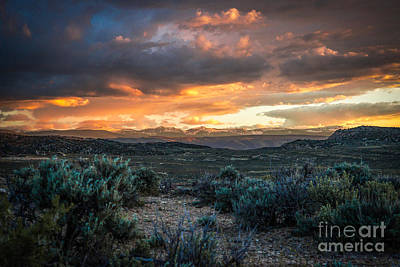 Sagebrush Sunset Poster