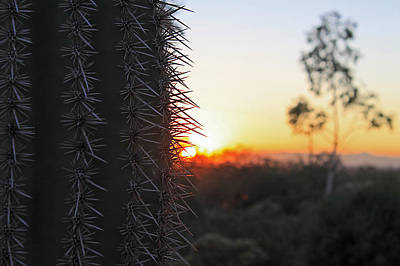 Poster featuring the photograph Sagurao Sunset by Gary Kaylor