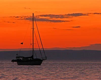 Sailboat At Sunset Poster by Marcia Socolik