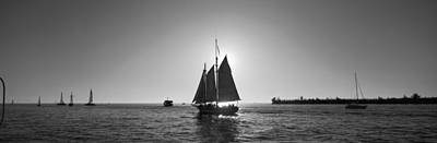 Sailboat, Key West, Florida, Usa Poster by Panoramic Images