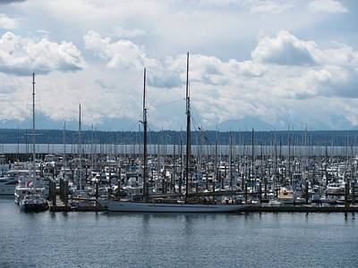 Sailboats In Seattle Poster by Steven Parker