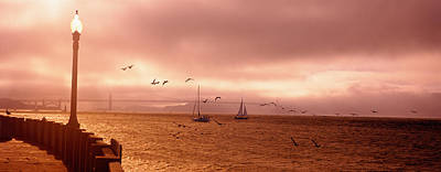 Sailboats In The Sea, San Francisco Poster by Panoramic Images