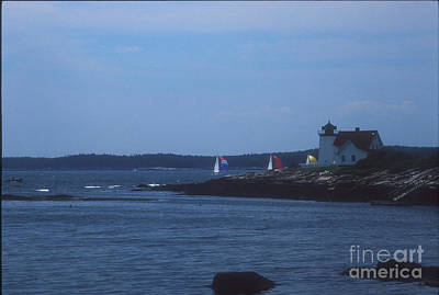 Sailing Regatta By Nubble Light Poster by Darleen Stry