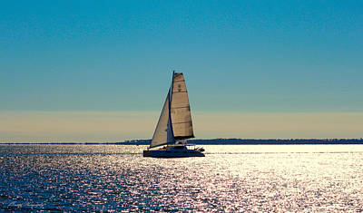 Sailing The Ocean Blue Poster by Debra Forand