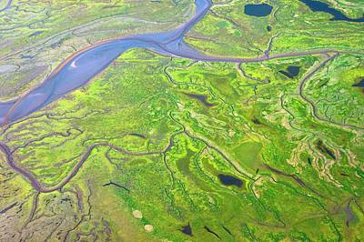 Salt Marshes From The Air. Poster by Mark Williamson