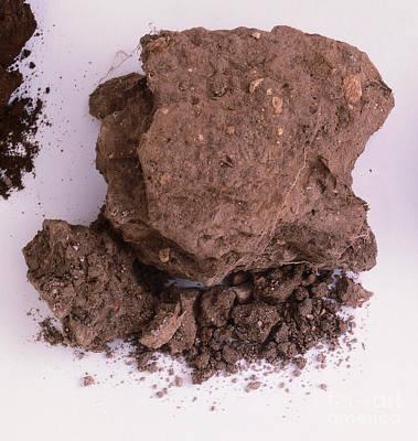 Sample Of Chalk Soil Poster